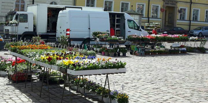 Kukkamyyntiä Loviisan torilla. Blomförsäljning på Lovisa torg.